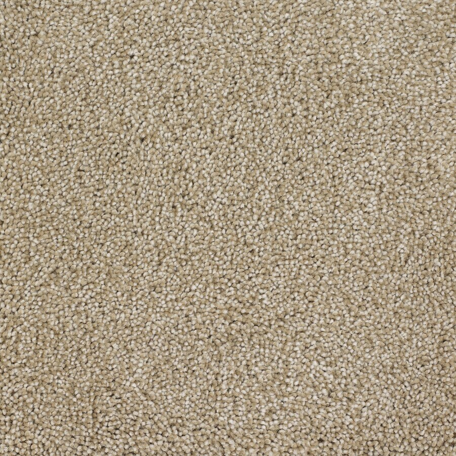 STAINMASTER Avalon Rectangular Indoor Tufted Area Rug (Common: 6 x 9; Actual: 72-in W x 108-in L)