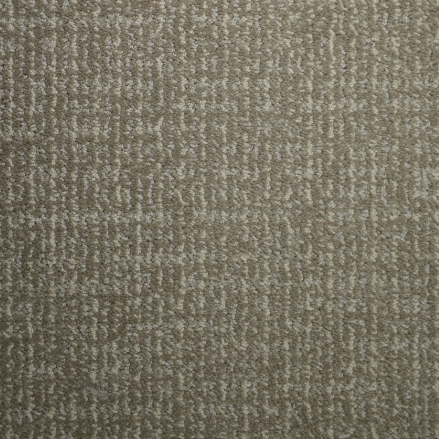 STAINMASTER PetProtect Caballero Bay Mist Cut and Loop Indoor Carpet