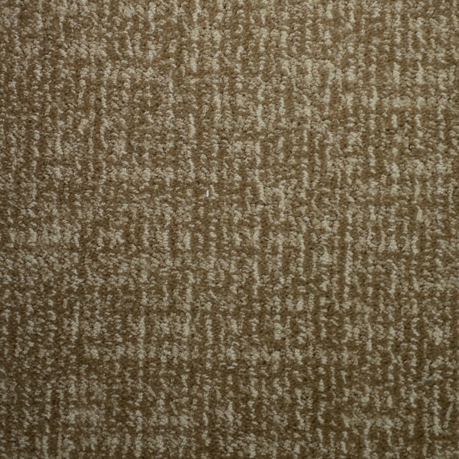 STAINMASTER PetProtect Caballero Biscay Cut and Loop Indoor Carpet