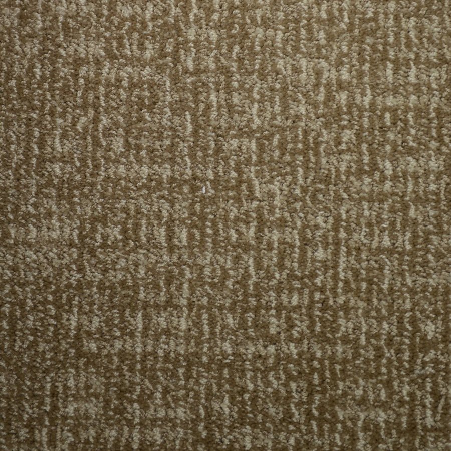 STAINMASTER Petprotect Caballero Biscay Interior Carpet