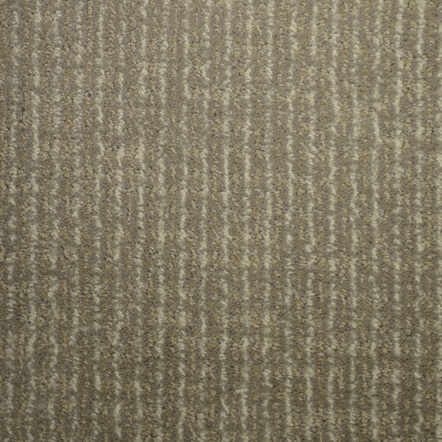 STAINMASTER PetProtect Caballero Cumberland Cut and Loop Indoor Carpet