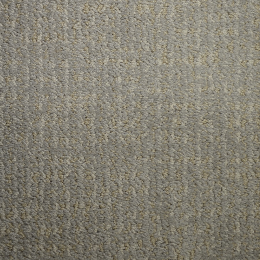 STAINMASTER PetProtect Caballero Wind Storm Cut and Loop Indoor Carpet