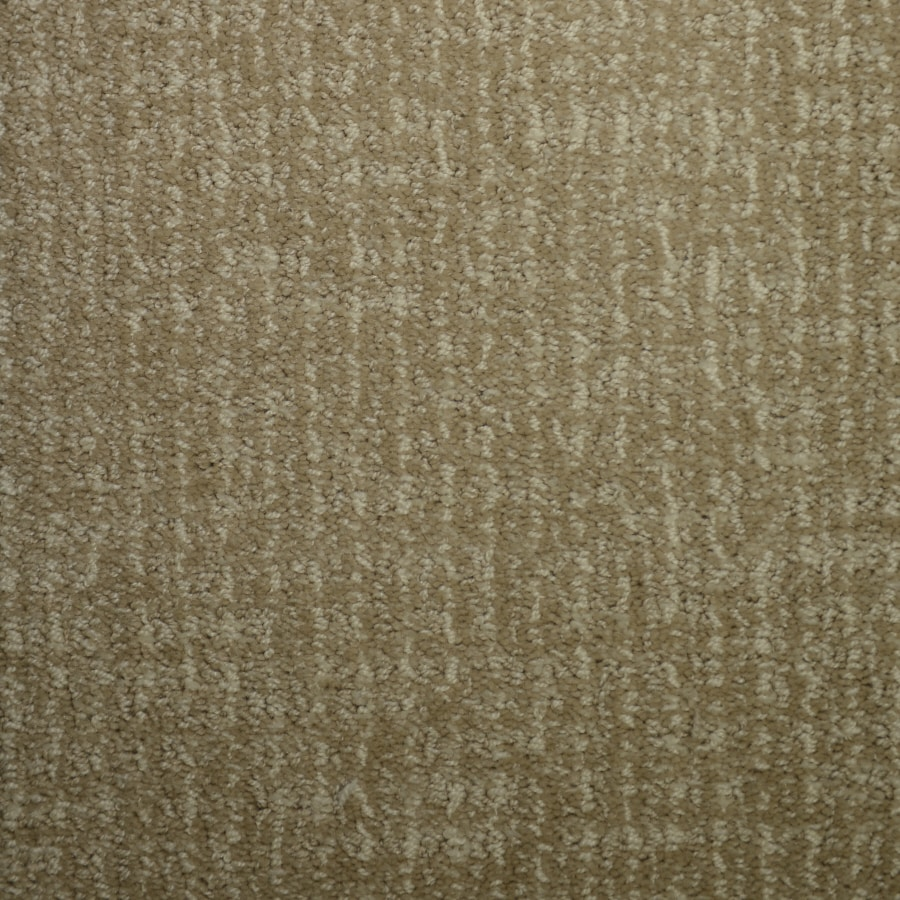 STAINMASTER PetProtect Caballero Softly Chic Cut and Loop Indoor Carpet