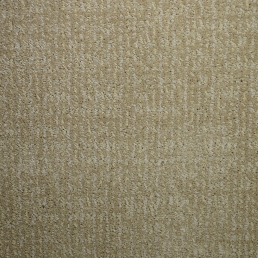 STAINMASTER PetProtect Caballero Wisteria Cut and Loop Indoor Carpet