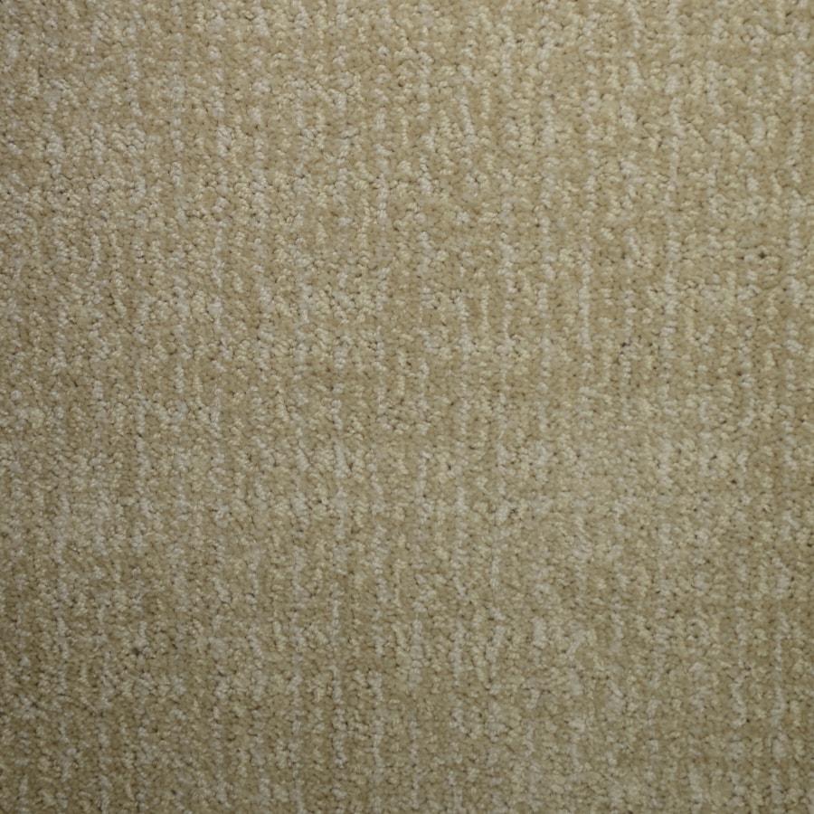 STAINMASTER Petprotect Caballero Wisteria Interior Carpet