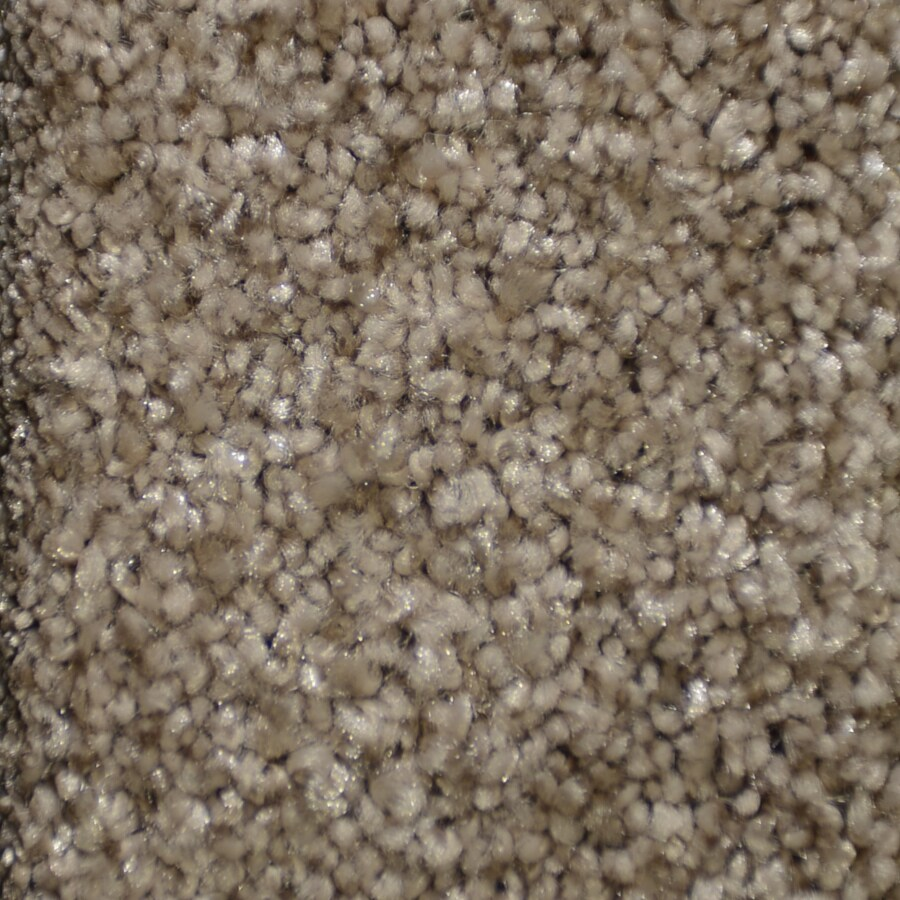 STAINMASTER TruSoft Clearman Estates 12-ft W Art Deco Shag/Frieze Interior Carpet