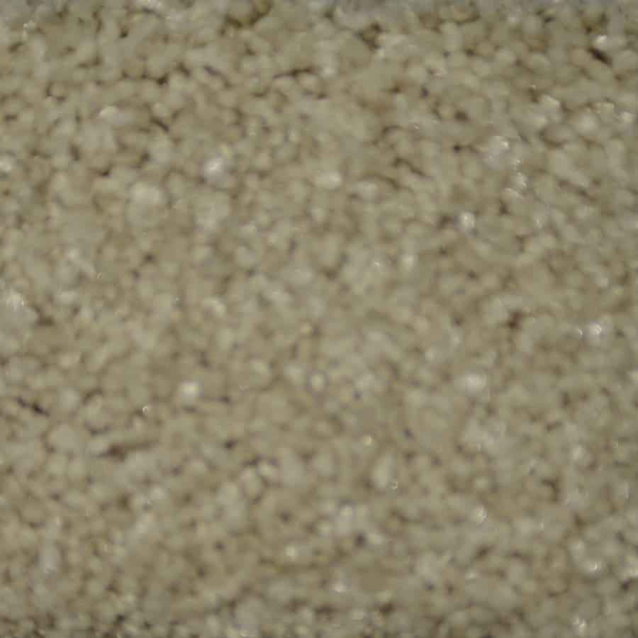 STAINMASTER TruSoft Clearman Estates Segal Frieze Indoor Carpet