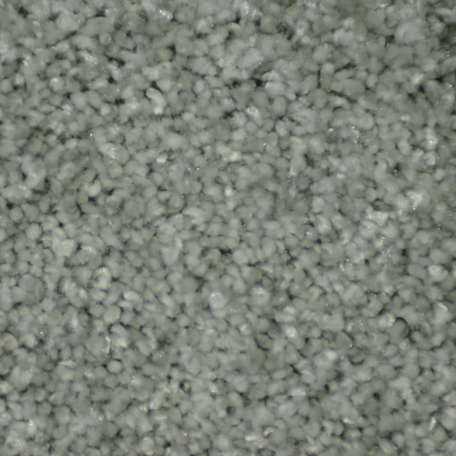 STAINMASTER TruSoft Clearman Estates Zumba Frieze Indoor Carpet