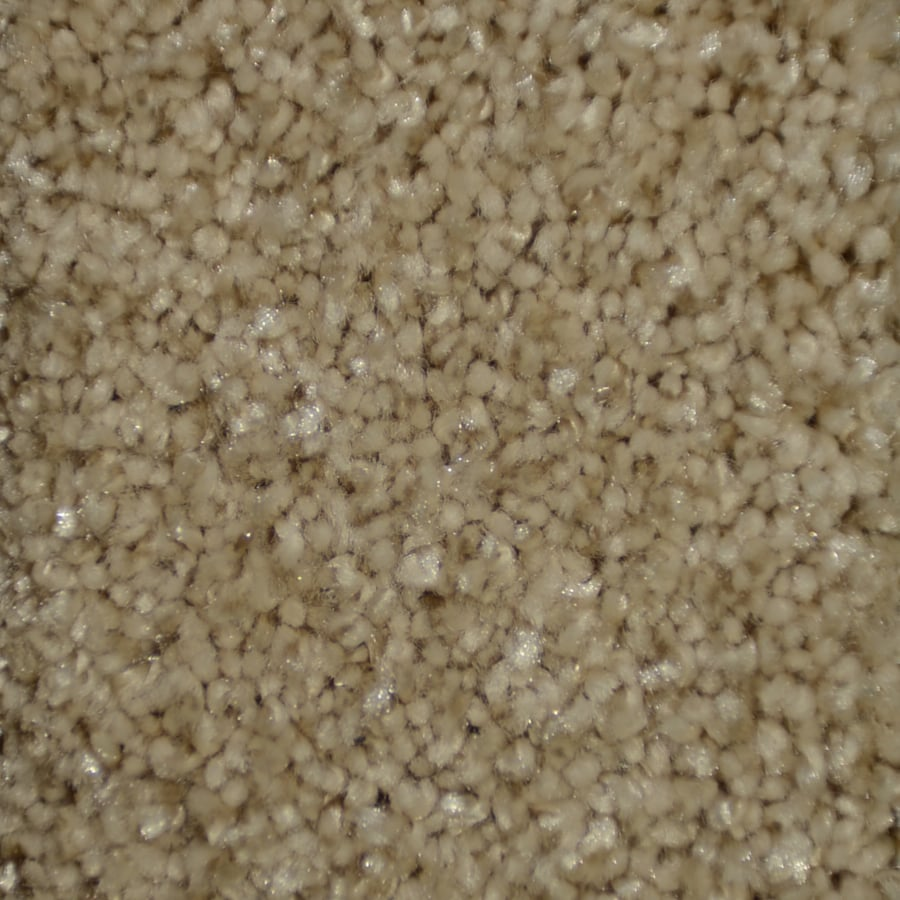 STAINMASTER TruSoft Clearman Estates Northwest Frieze Indoor Carpet