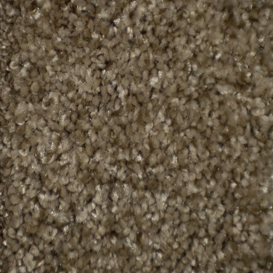 STAINMASTER TruSoft Clearman Estates Pinwale Frieze Indoor Carpet