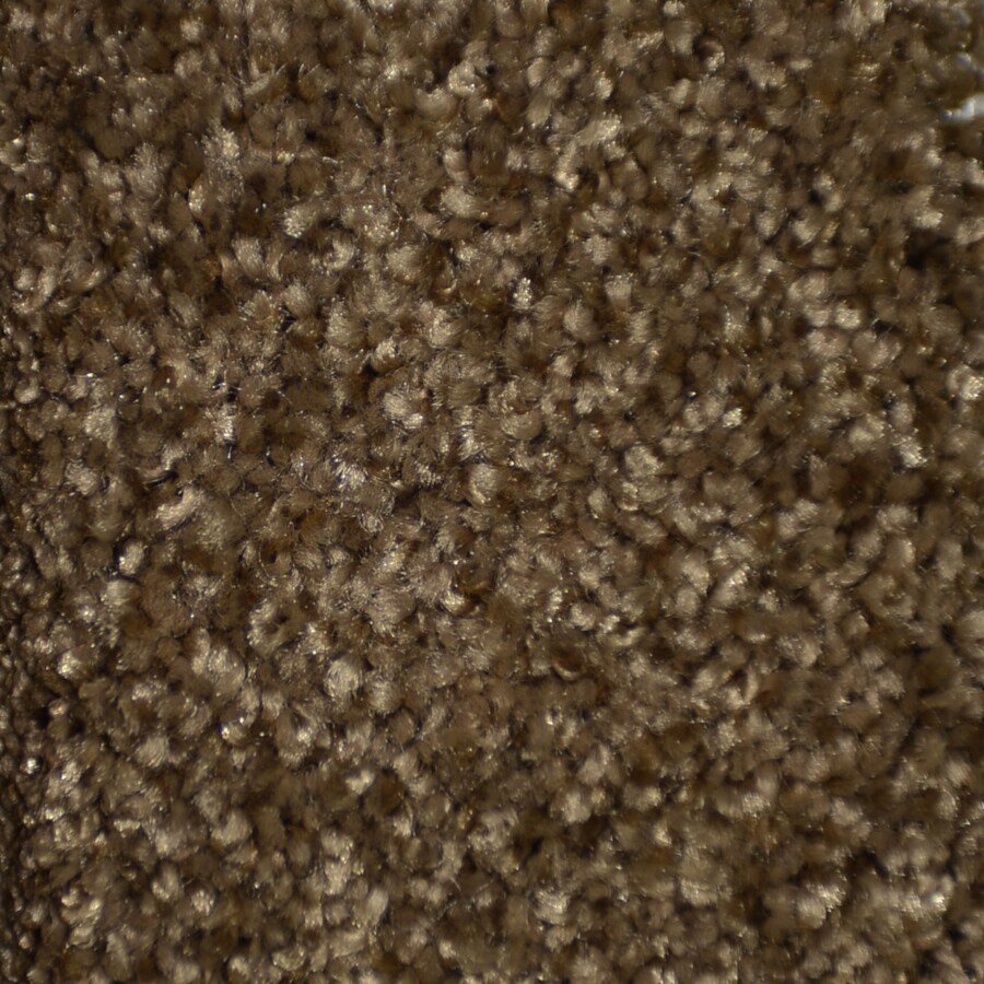STAINMASTER TruSoft Clearman Estates Peekskill Frieze Indoor Carpet