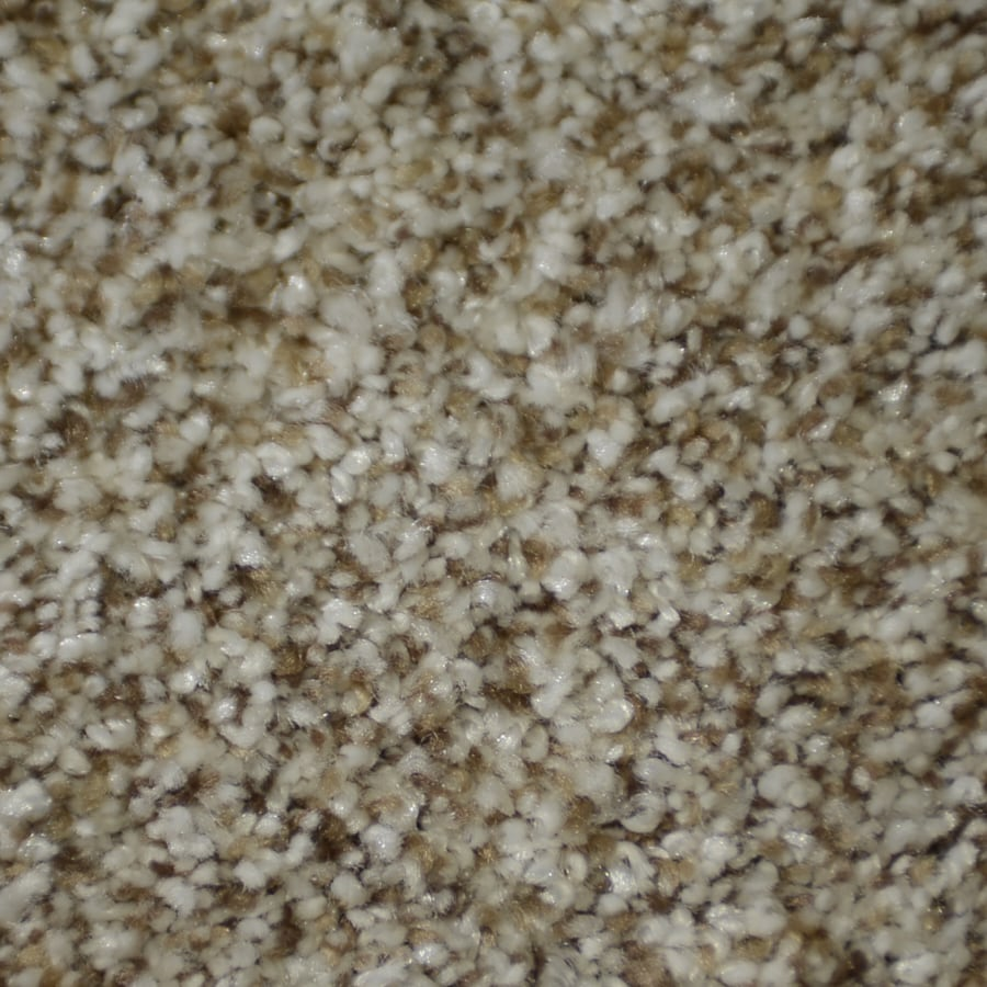 STAINMASTER TruSoft Clearman Estates Houdini Frieze Indoor Carpet