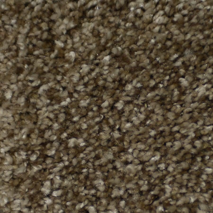 STAINMASTER TruSoft Clearman Estates 12-ft W Montage Shag/Frieze Interior Carpet