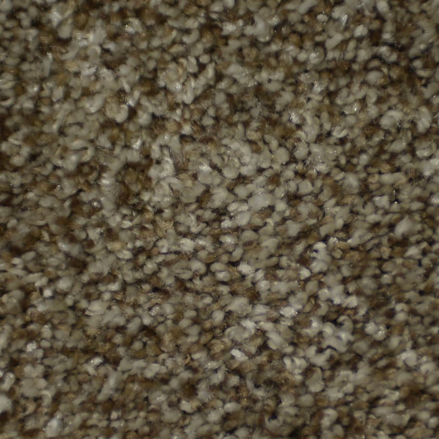 STAINMASTER TruSoft Clearman Estates Shandur Frieze Indoor Carpet