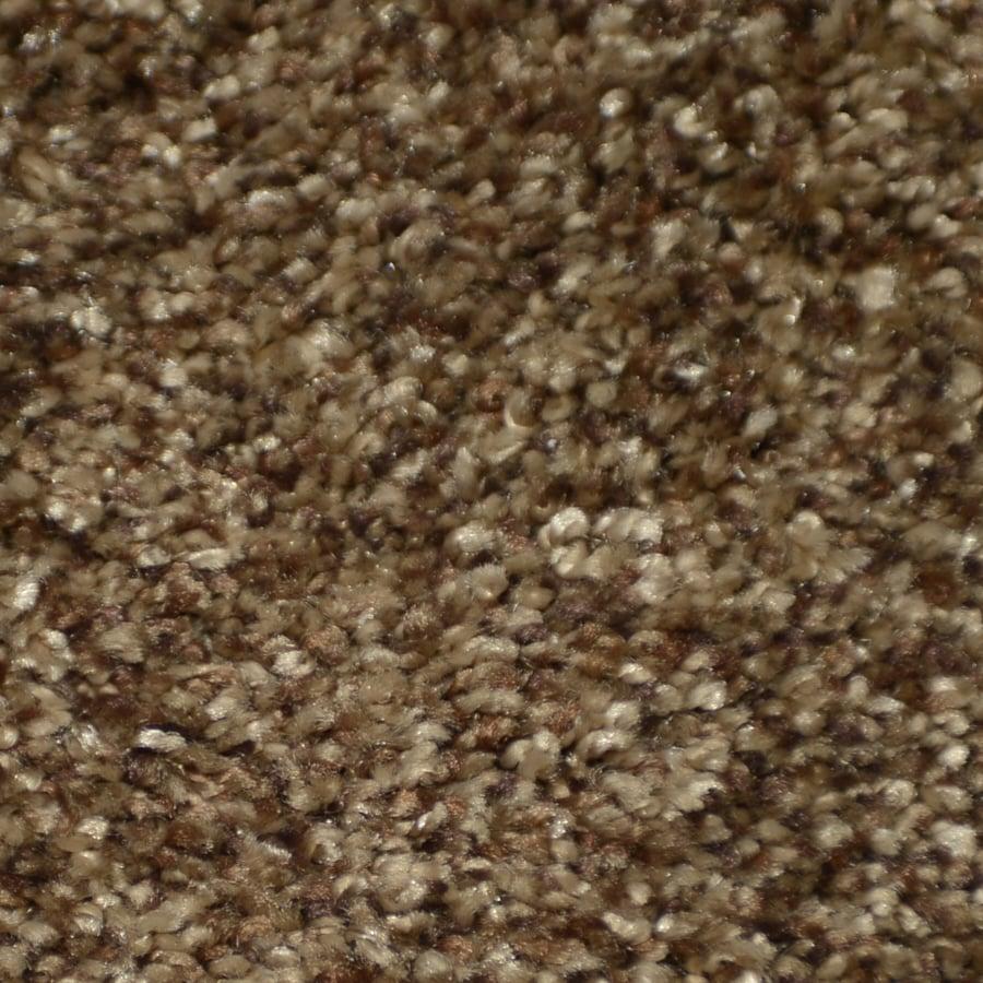 STAINMASTER TruSoft Clearman Estates Bentley Shag/Frieze Interior Carpet