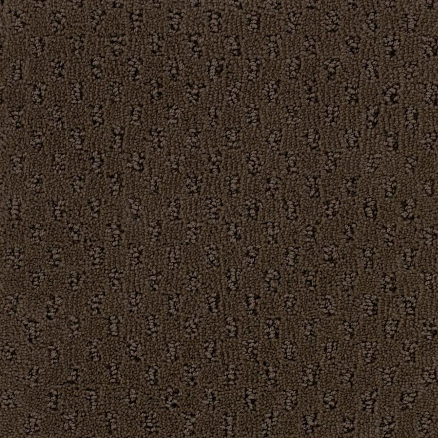 STAINMASTER PetProtect River Walk 12-ft W x Cut-to-Length Fresh Brew Textured Interior Carpet