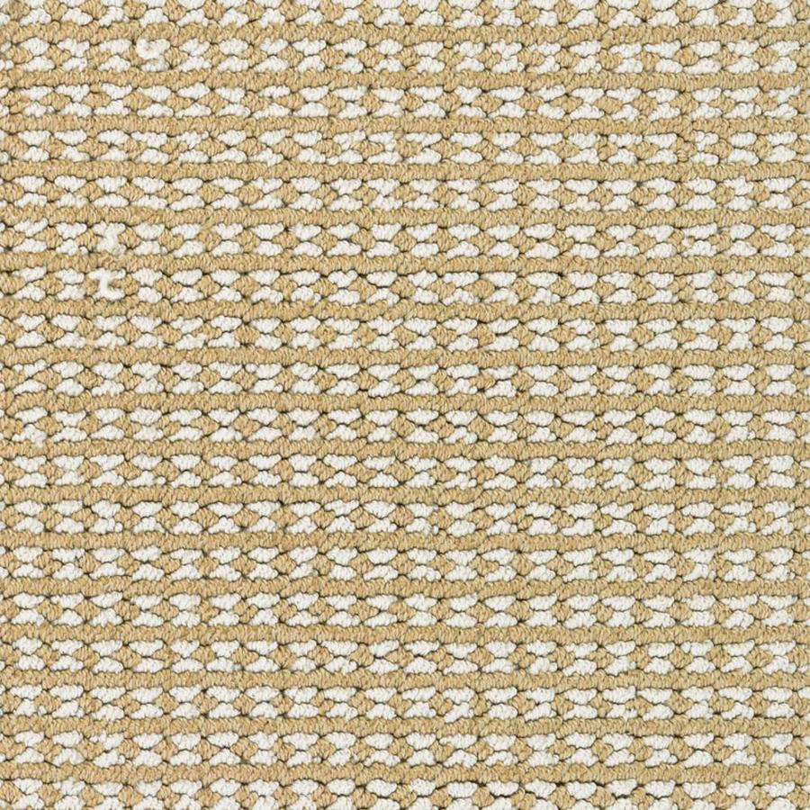 STAINMASTER PetProtect Secret Dream 12-ft W x Cut-to-Length Canvas Pattern Interior Carpet