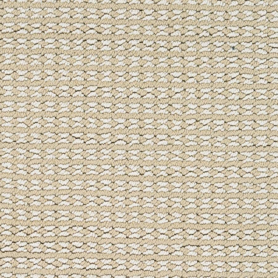 STAINMASTER PetProtect Secret Dream 12-ft W x Cut-to-Length Palmetto Pattern Interior Carpet