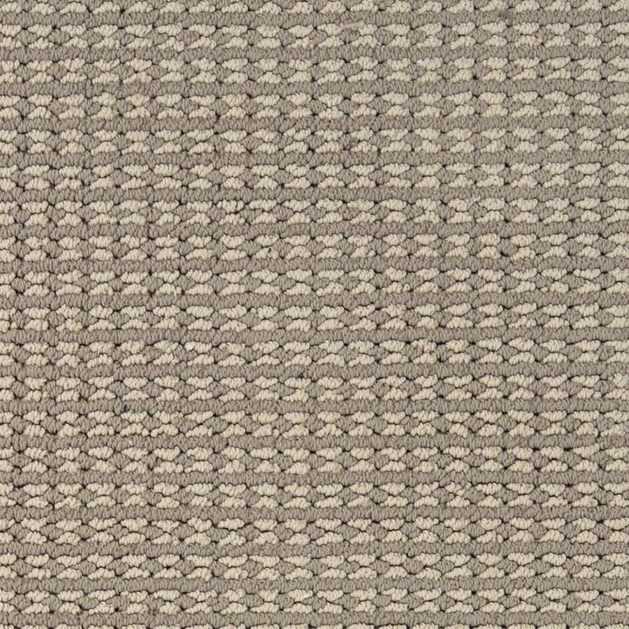 STAINMASTER Petprotect Secret Dream 12-ft W x Cut-to-Length Matisse Pattern Interior Carpet