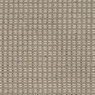 Petprotect Secret Dream 12 Ft Pattern Interior Carpet