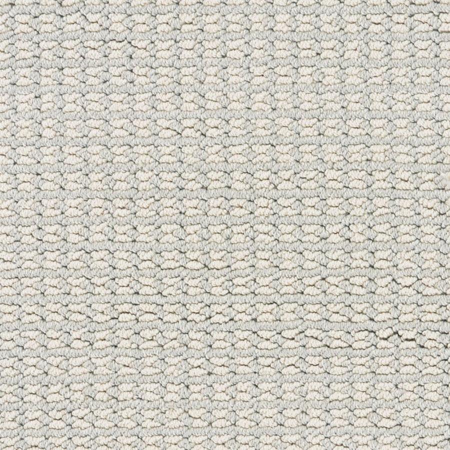 STAINMASTER PetProtect Secret Dream Tribeca Interior Carpet