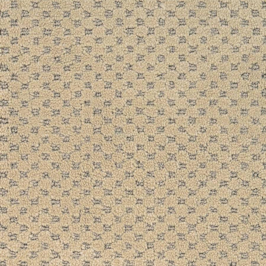 STAINMASTER PetProtect Natural Essence Hemlock Cut and Loop Indoor Carpet