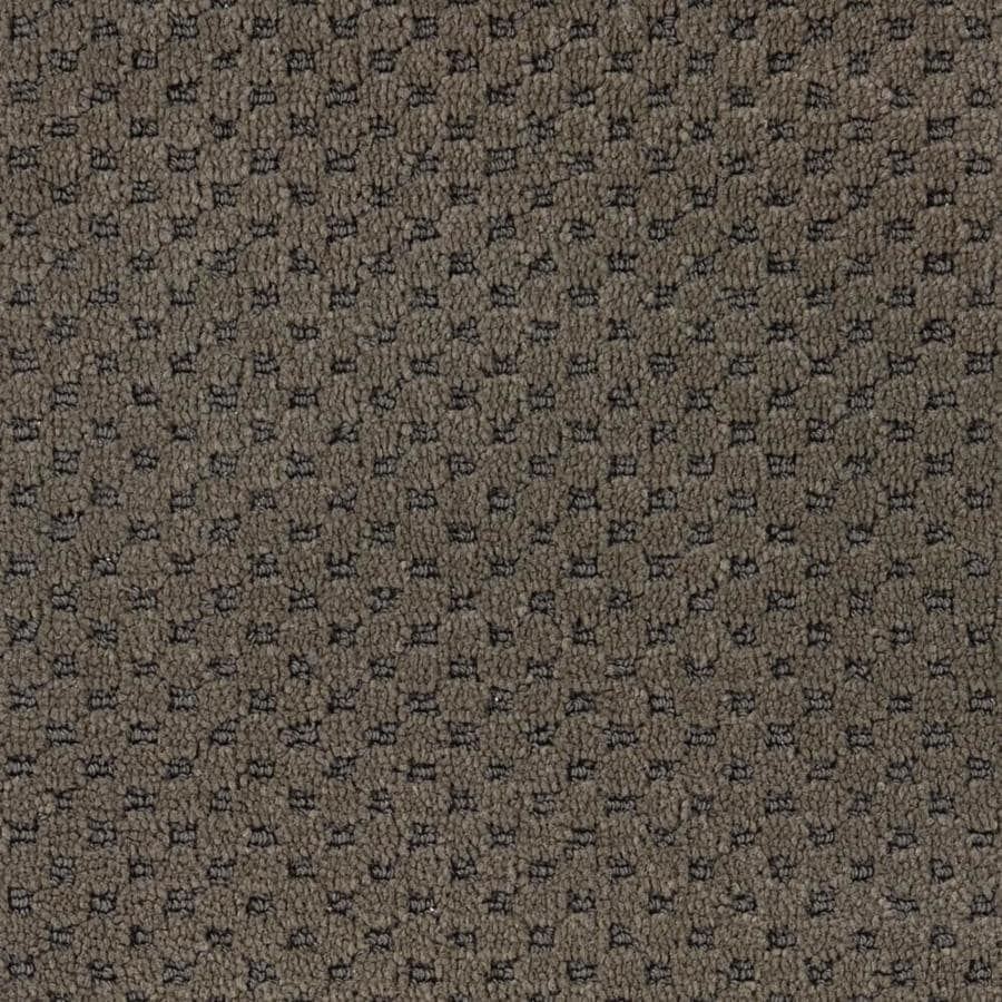 STAINMASTER PetProtect Natural Essence Smooth Mineral Cut and Loop Indoor Carpet