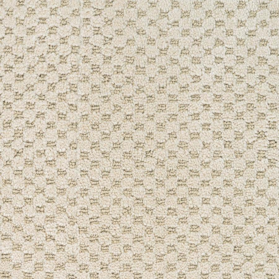 STAINMASTER PetProtect Natural Essence 12-ft W x Cut-to-Length Hyde Park Pattern Interior Carpet