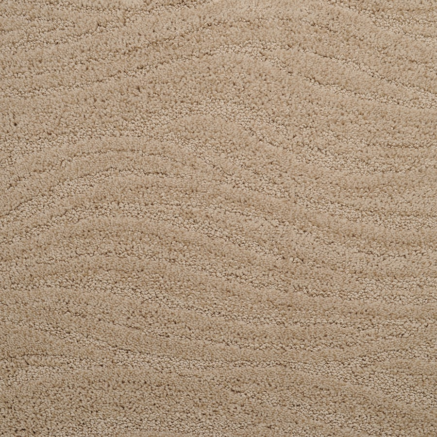 STAINMASTER Active Family Rutherford Rabbit Fur Cut and Loop Indoor Carpet