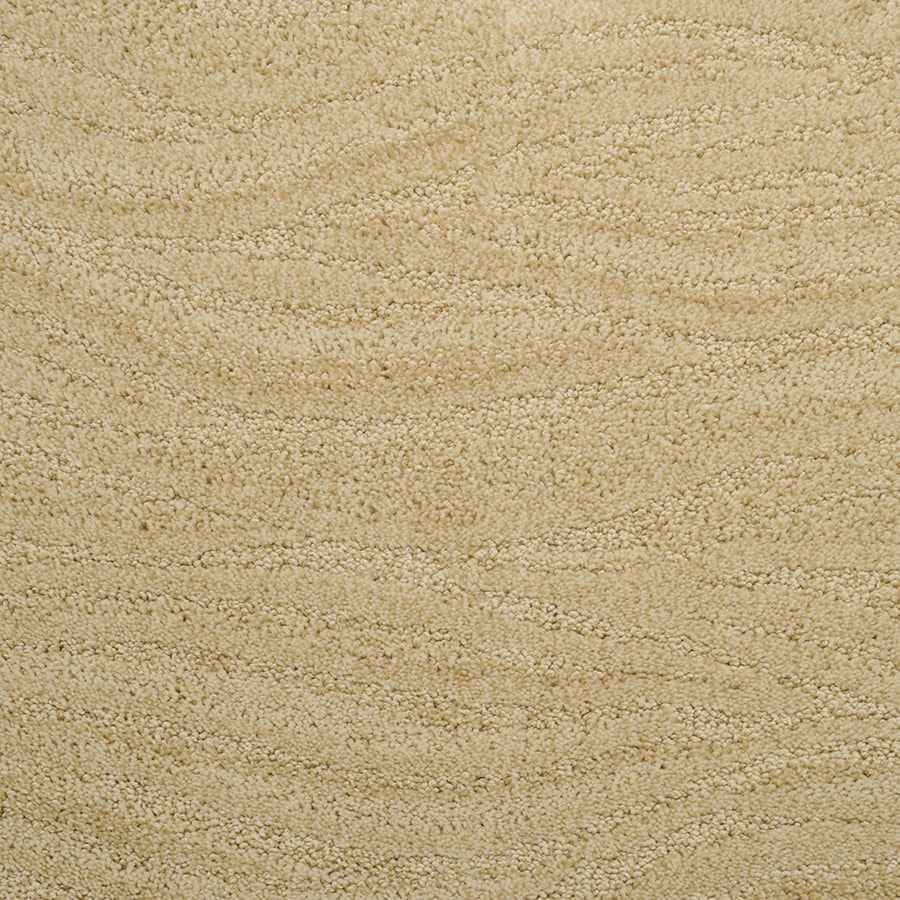 STAINMASTER Active Family Rutherford Stadium Gold Cut and Loop Indoor Carpet