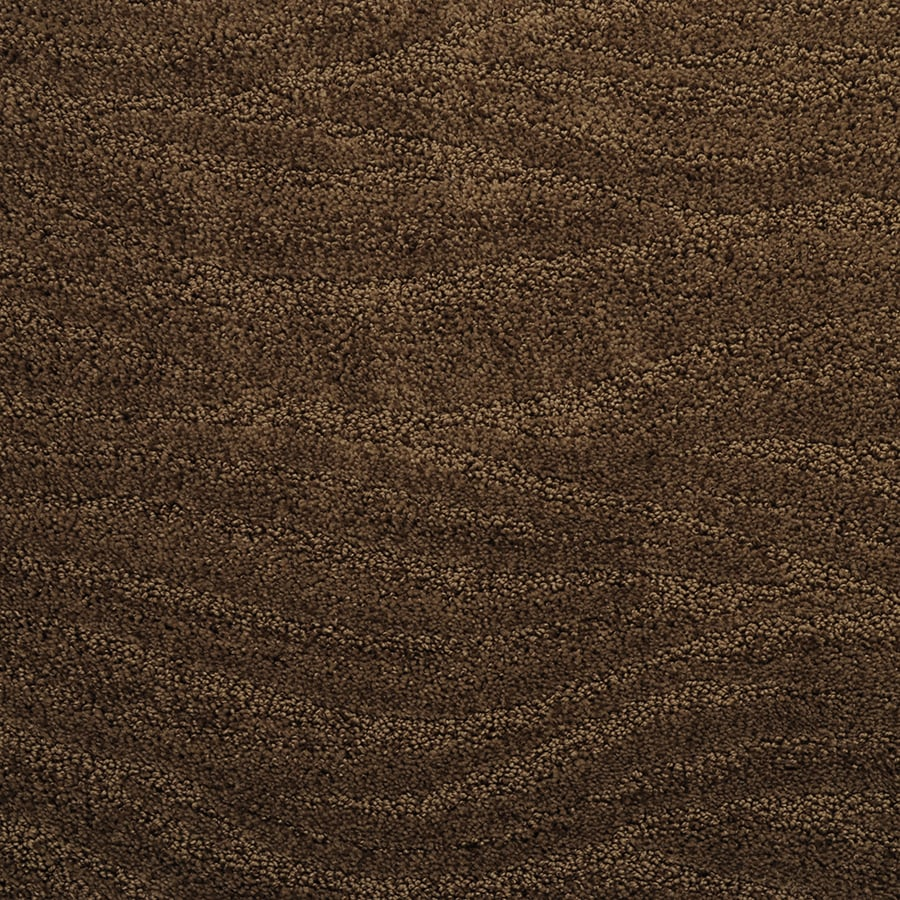 STAINMASTER Active Family Rutherford Iced Cocoa Cut and Loop Indoor Carpet