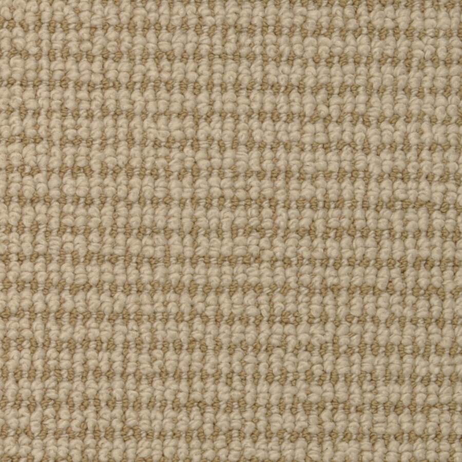 STAINMASTER Active Family Morning Glory Desert Dusk Cut and Loop Indoor Carpet
