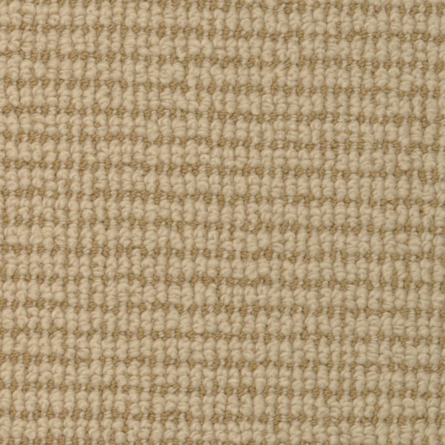 STAINMASTER Active Family Morning Glory Holland Cut and Loop Indoor Carpet