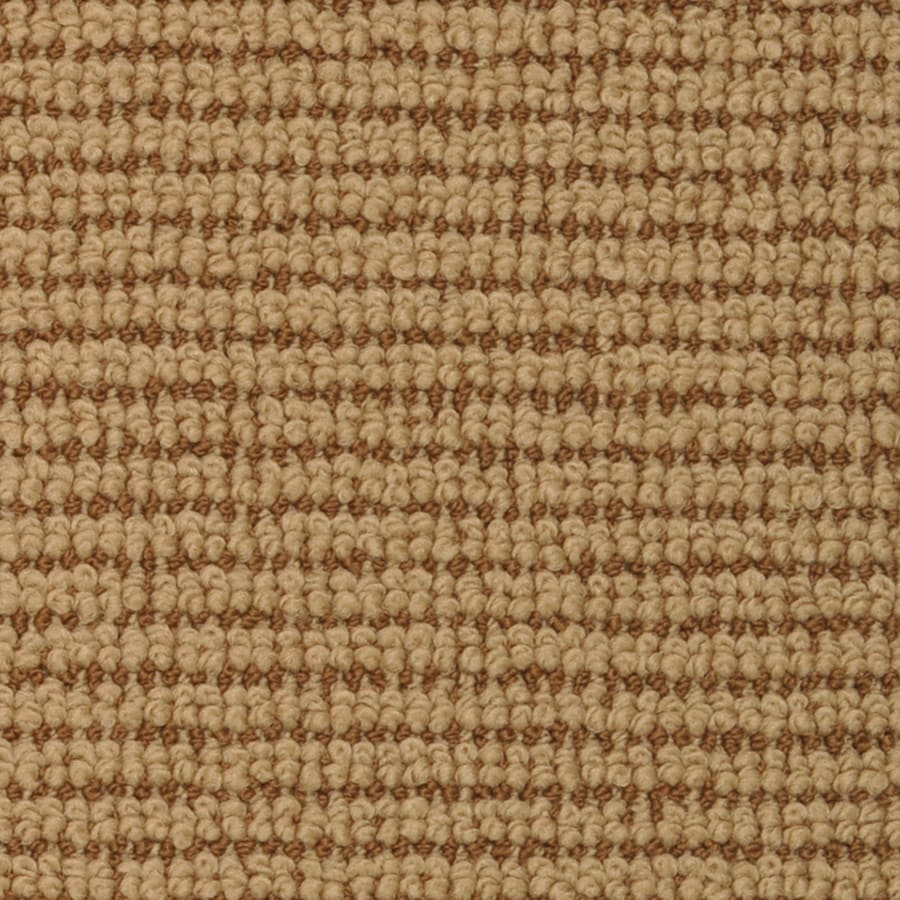 STAINMASTER Active Family Morning Glory 12-ft W x Cut-to-Length Picasso Pattern Interior Carpet