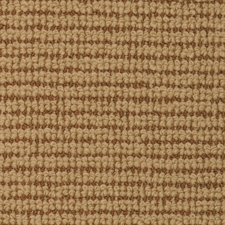 STAINMASTER Active Family Morning Glory Picasso Cut and Loop Indoor Carpet