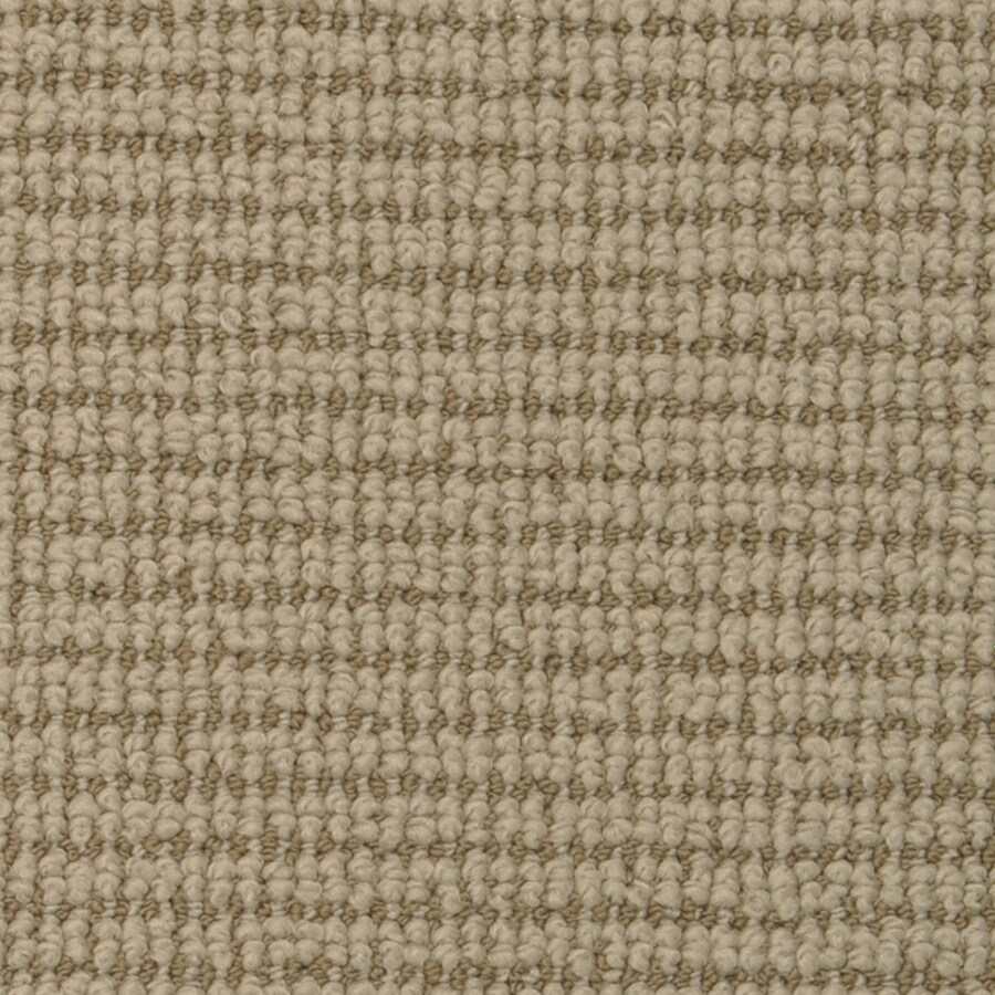 STAINMASTER Active Family Morning Glory Soybean Interior Carpet