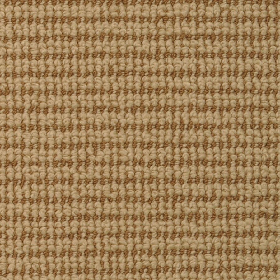 STAINMASTER Active Family Morning Glory Honey Bells Cut and Loop Indoor Carpet