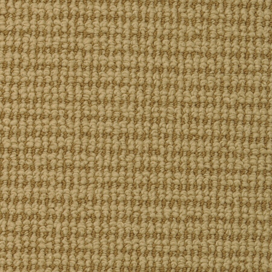 STAINMASTER Active Family Morning Glory Double Khaki Cut and Loop Indoor Carpet