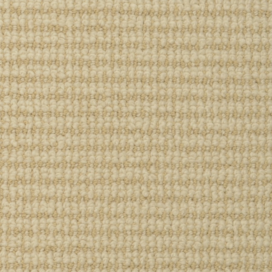 STAINMASTER Active Family Morning Glory Butter Fleck Cut and Loop Indoor Carpet