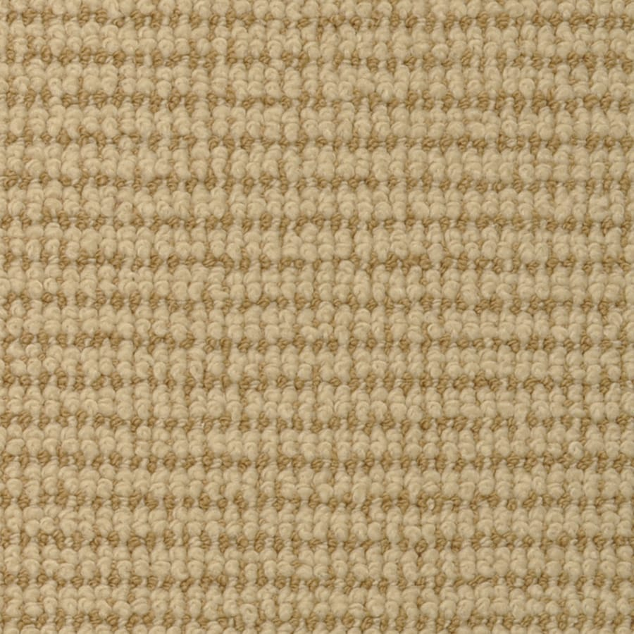 STAINMASTER Active Family Morning Glory Acacia Cut and Loop Indoor Carpet