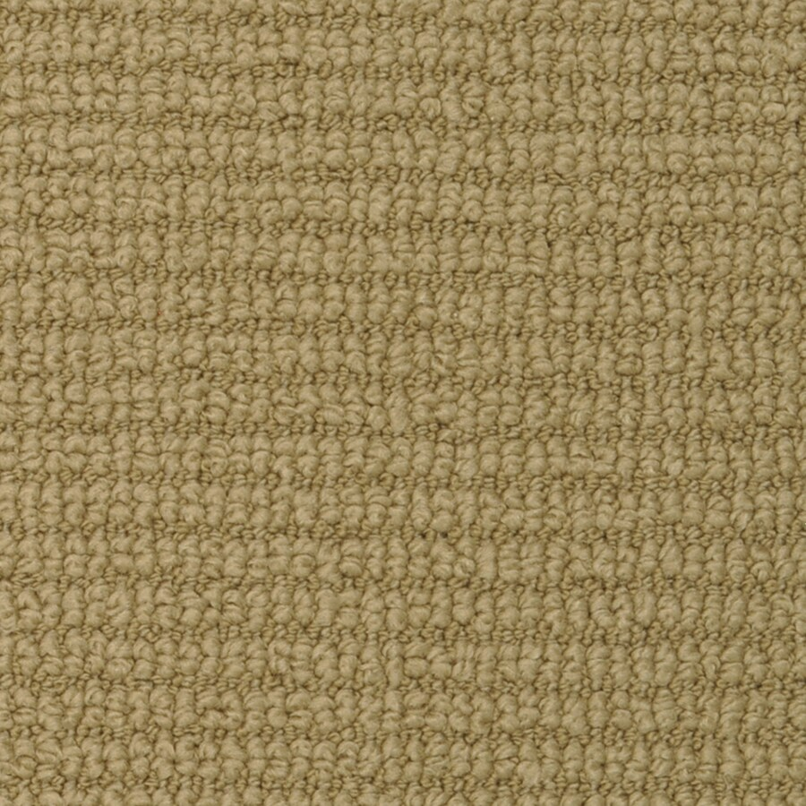 STAINMASTER Active Family Morning Glory 12-ft W x Cut-to-Length Olive Tree Pattern Interior Carpet