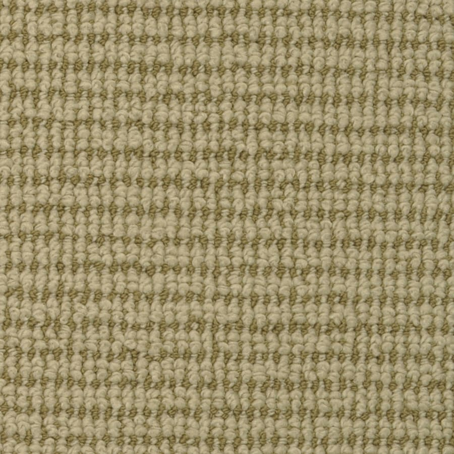 STAINMASTER Active Family Morning Glory Boston Fern Pattern Interior Carpet