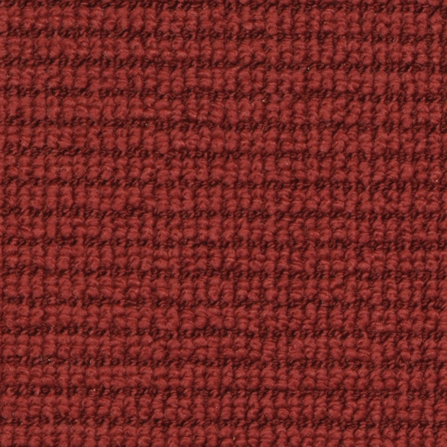 STAINMASTER Active Family Morning Glory Rich Wine Cut and Loop Indoor Carpet