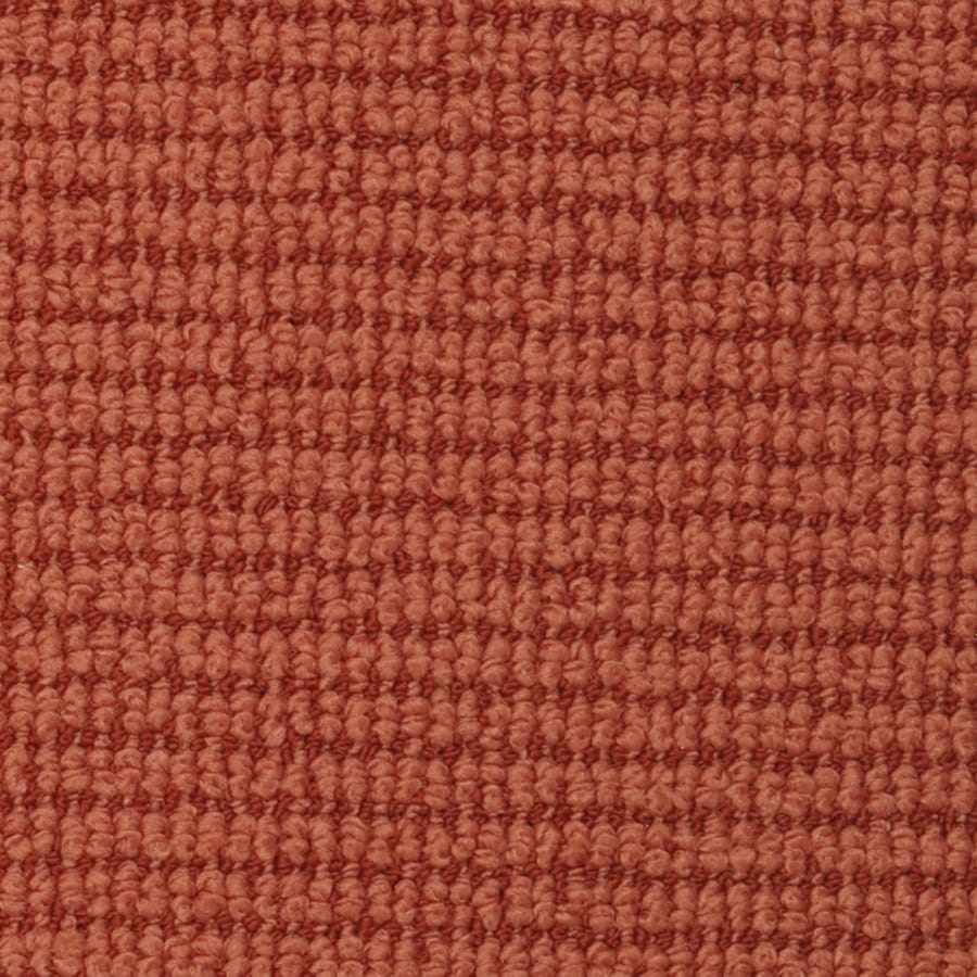 STAINMASTER Active Family Morning Glory Terracotta Cut and Loop Indoor Carpet