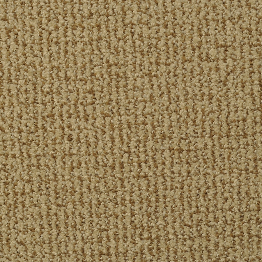STAINMASTER Active Family Morning Jewel 12-ft W x Cut-to-Length Beaver Pattern Interior Carpet