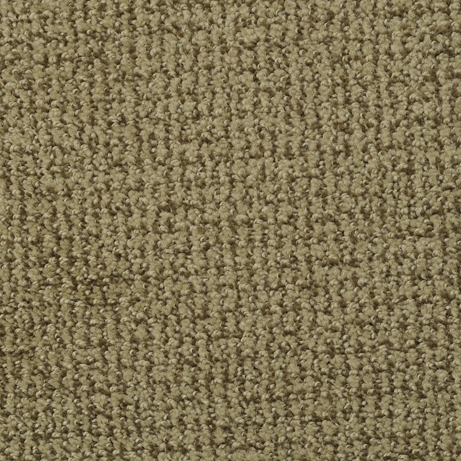 STAINMASTER Active Family Morning Jewel Bay Pattern Interior Carpet