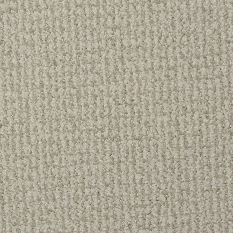 STAINMASTER Active Family Morning Jewel True Grit Pattern Interior Carpet