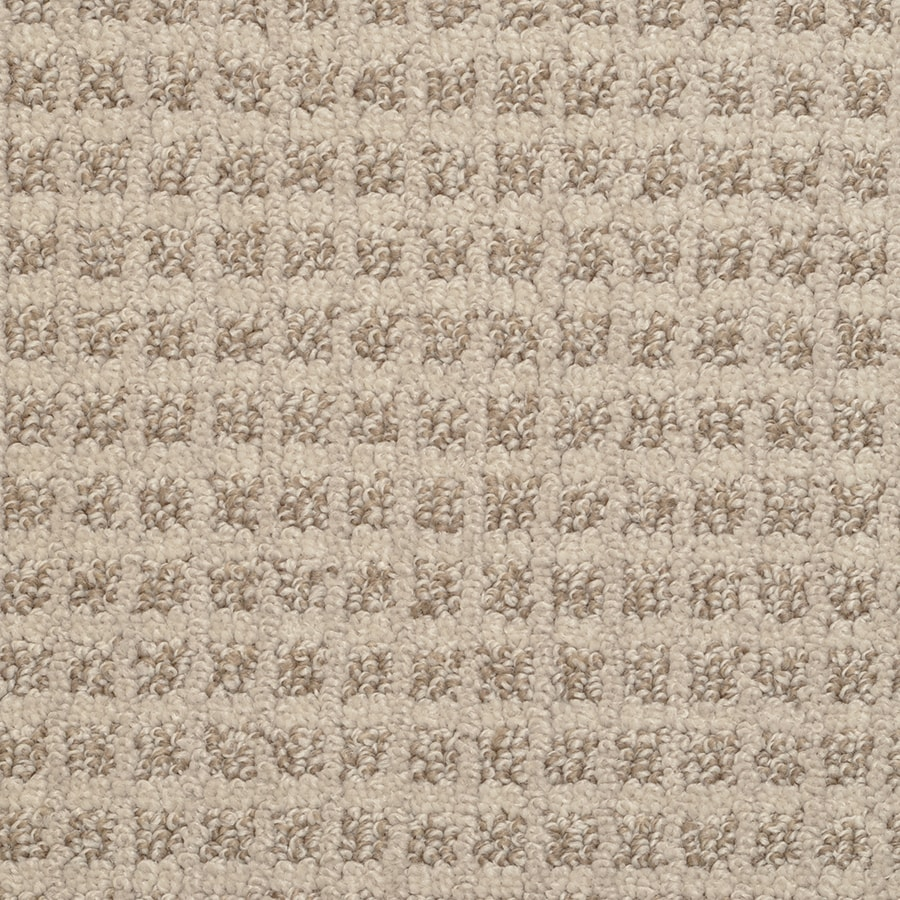 STAINMASTER Active Family Medford Spice Pattern Interior Carpet