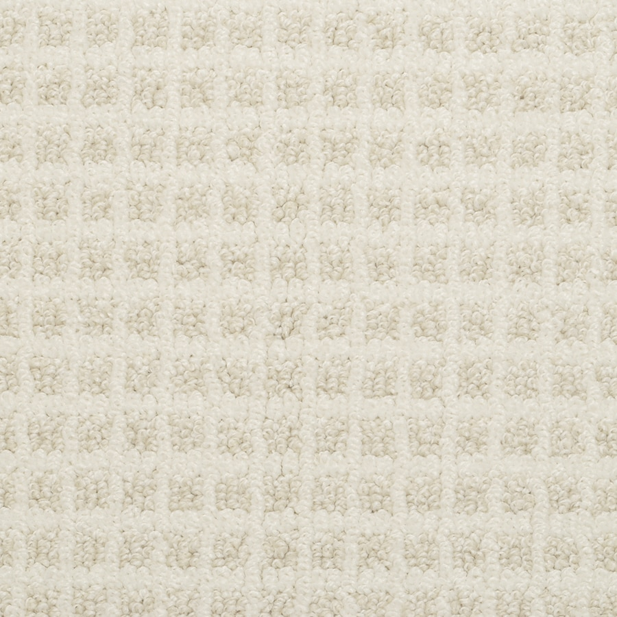 STAINMASTER Active Family Medford Seed Pearl Pattern Interior Carpet