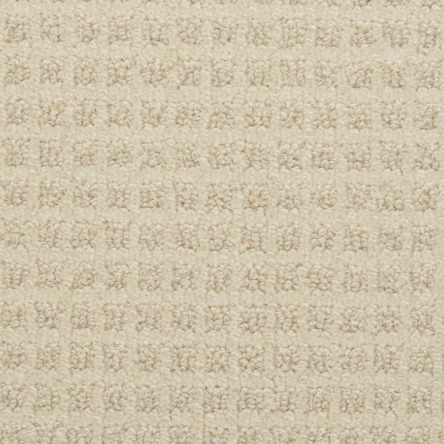 STAINMASTER Active Family Medford Gentle Fawn Cut and Loop Indoor Carpet